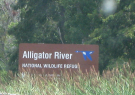 Alligator River National Refuge